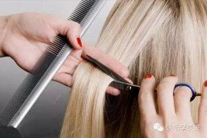 剪髮篇-如何為好的剪髮?