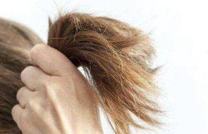 养护洗篇-頭髮分類